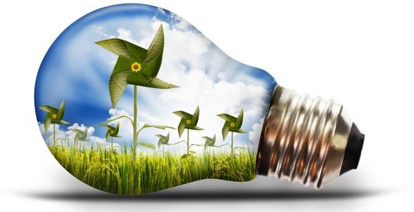 Környezetvédelem fordítás